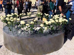 86-roses-pour-les-victimes